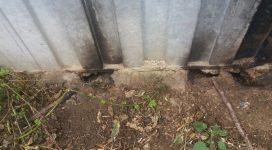 Rat Removal Job at a farm site.