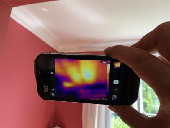 Honey bees identified by thermal camera