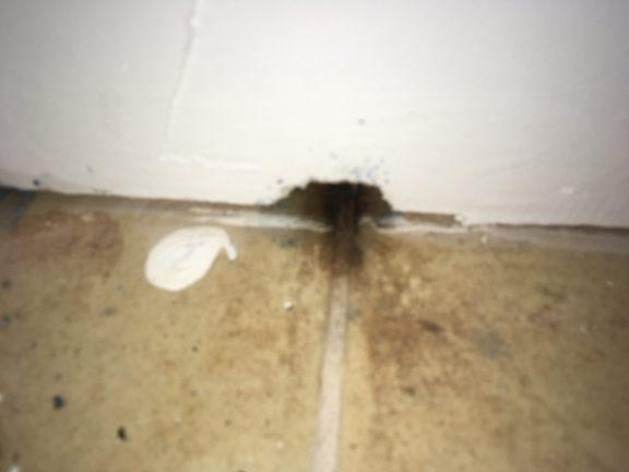 Mouse hole   Pest Control Near Me